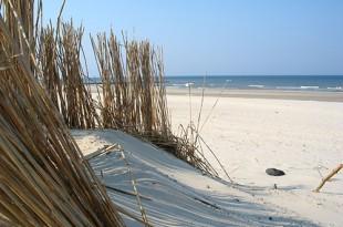 vacances-ete-plage-enfant